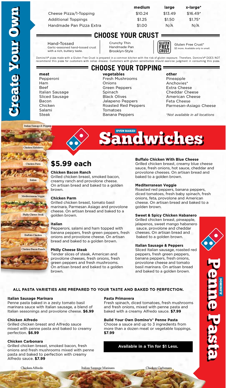 dominos pizza 3 essay Take a look at the social media crisis domino's pizza faced back in 2009, and the successes and failures you can take away from it.